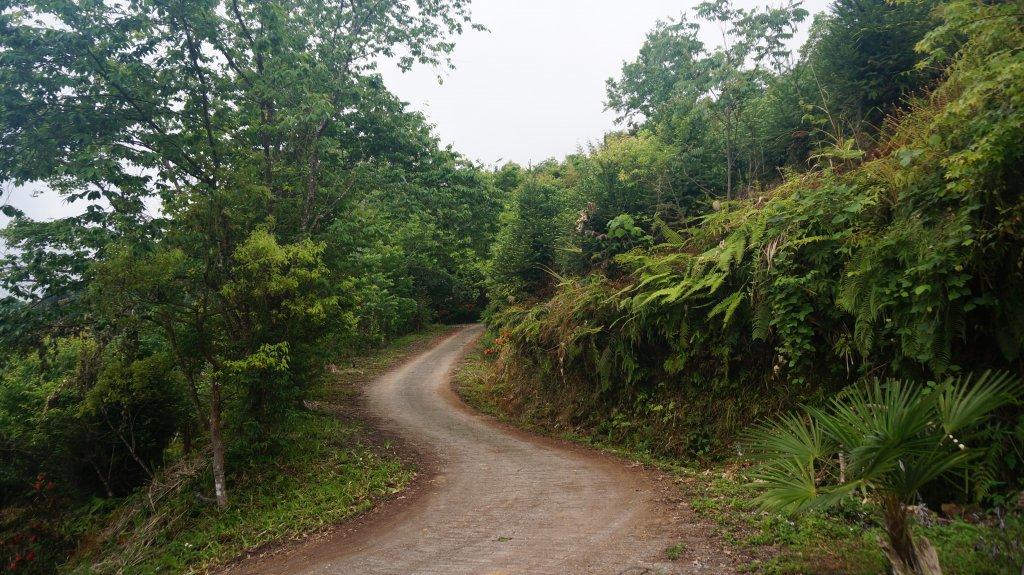 鵝公髻山_1363391