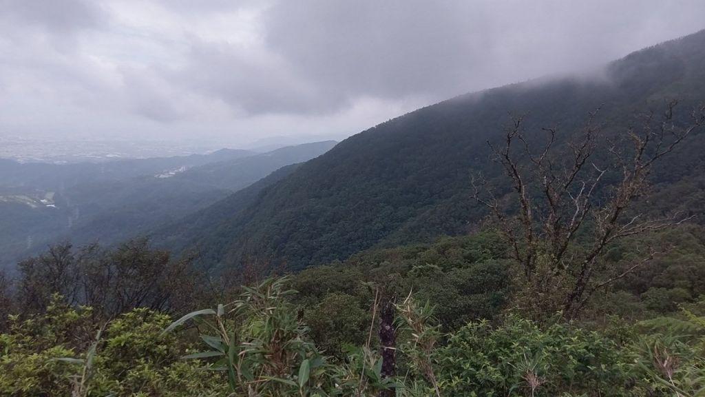 2018.06 聖母登山步道續攻三角崙山_355197