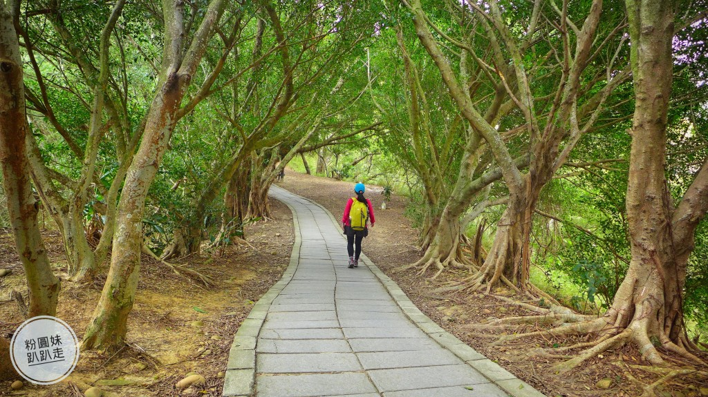【台中大肚】環保公園步道+萬里長城步道_251749