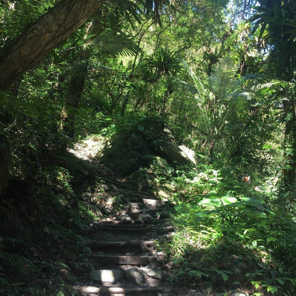 聖母山莊步道_559370
