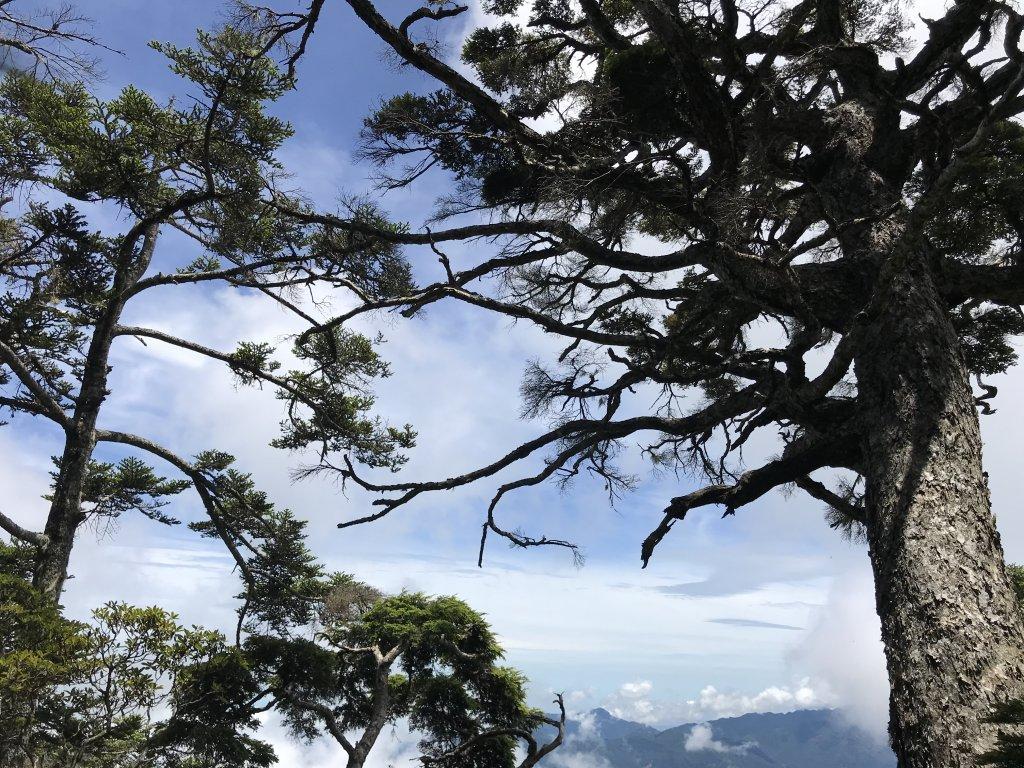 雪山西稜 - 我的第一次長程縱走_1420429