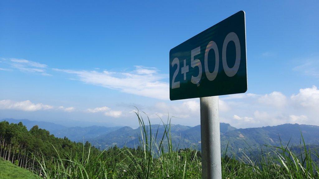 《新竹》柳杉林海 油羅山O型20210515_1387762