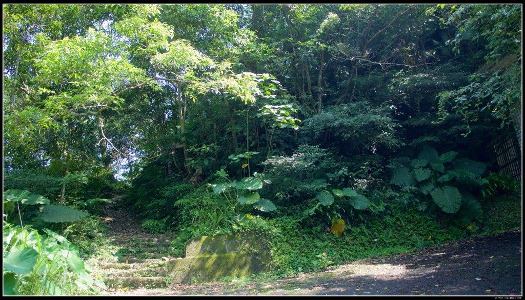 小百岳:二格山、猴山岳、南邦寮山_645320