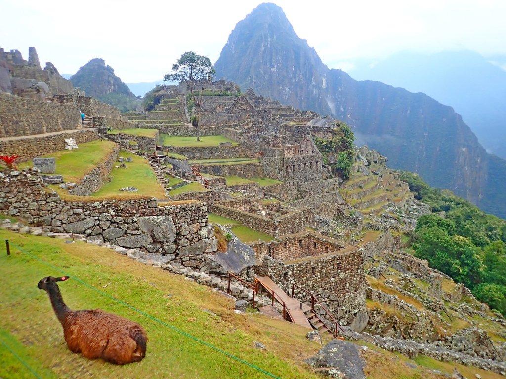 南美洲自助行—馬丘比丘、瓦納比丘 _706049