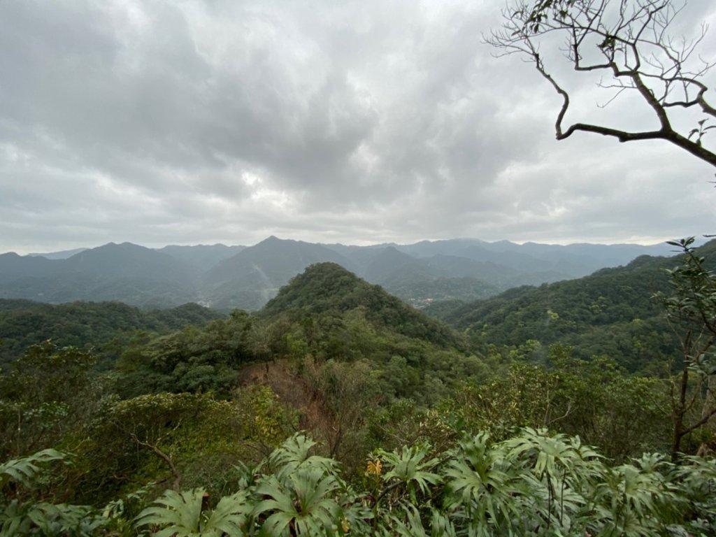 整理往平溪峰頭尖的山路2_834676
