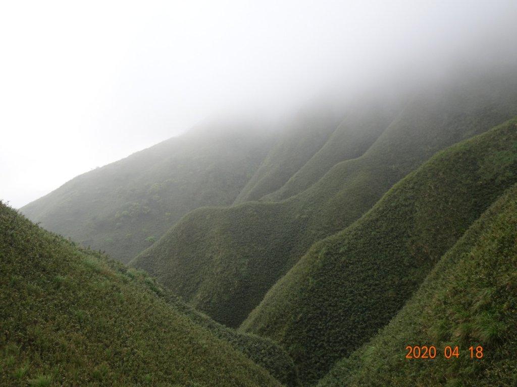 抹茶山_927349