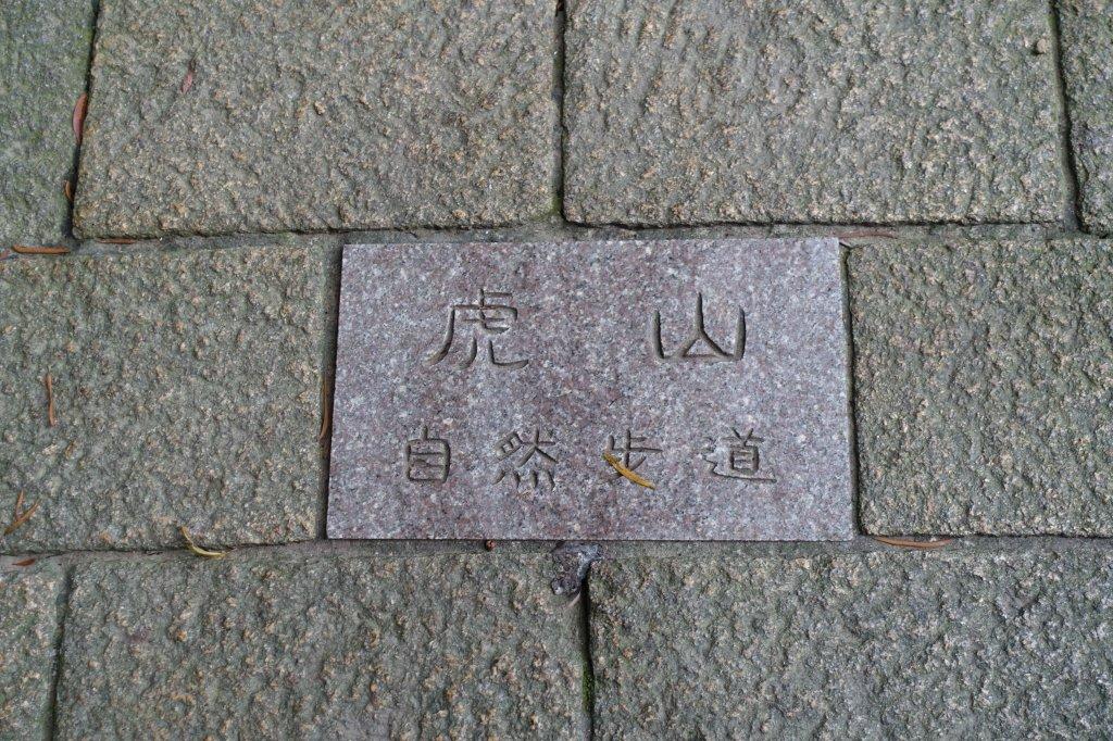 虎山自然步道.麗山橋口步道_1098159