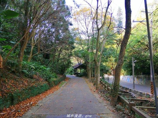 台中~悠靜的秘境步道~三崁頂健康步道_1293793