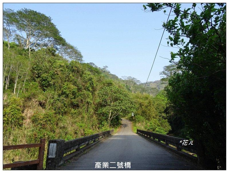 霧峰/桐林花廊步道_924426
