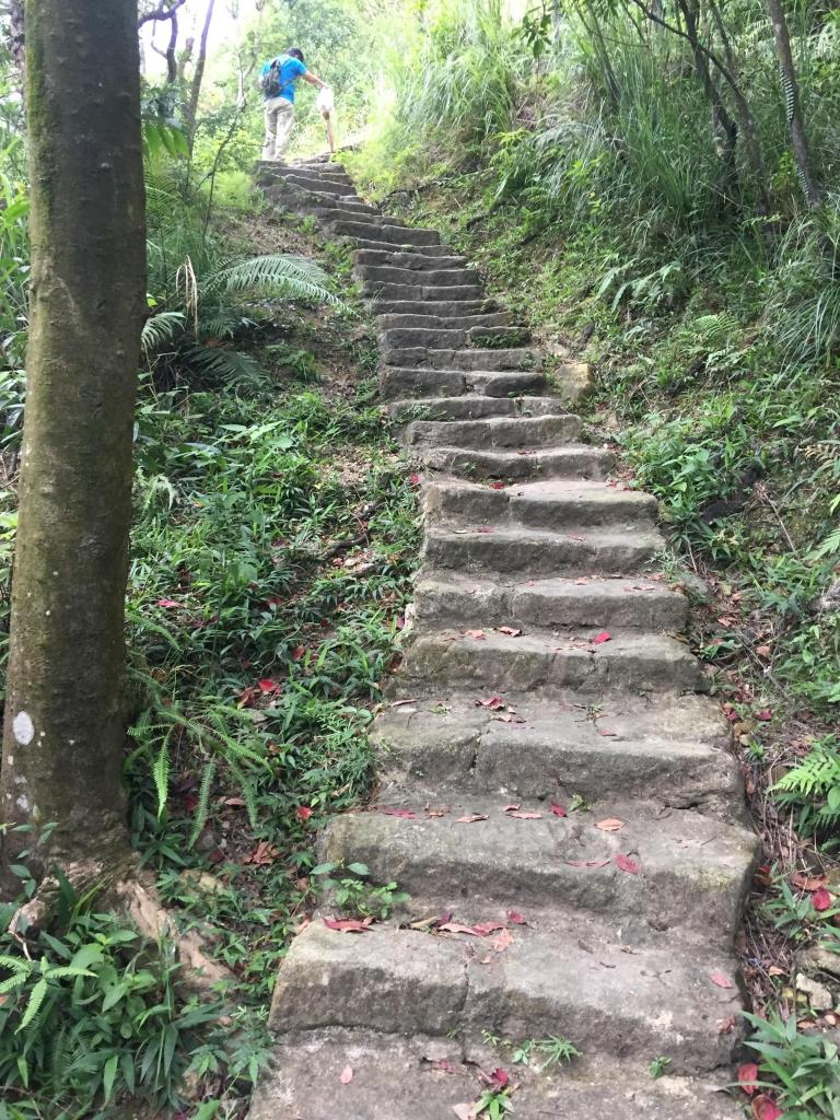 內湖鯉魚山步道_56001