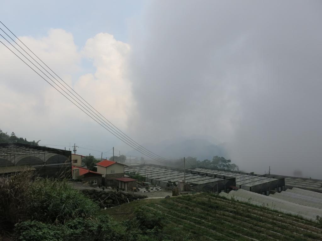 漫步在雲端~二延平霧之道雙拼_56033