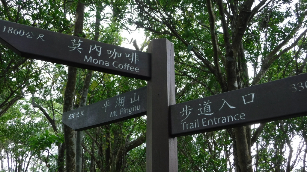 【新北/平溪】平湖尖越嶺和尚尖_56193
