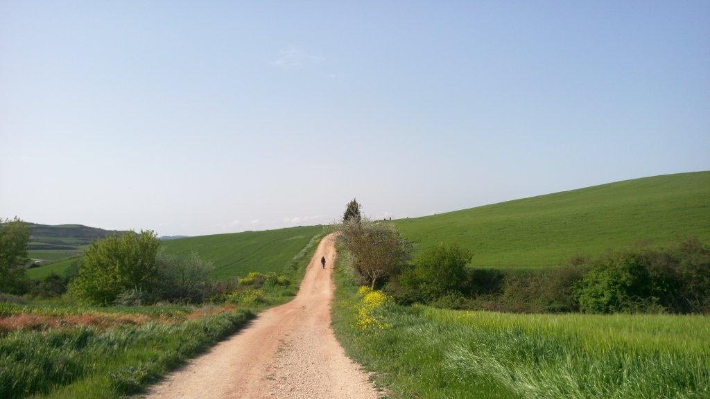 西班牙朝聖之路-法國之路_585419