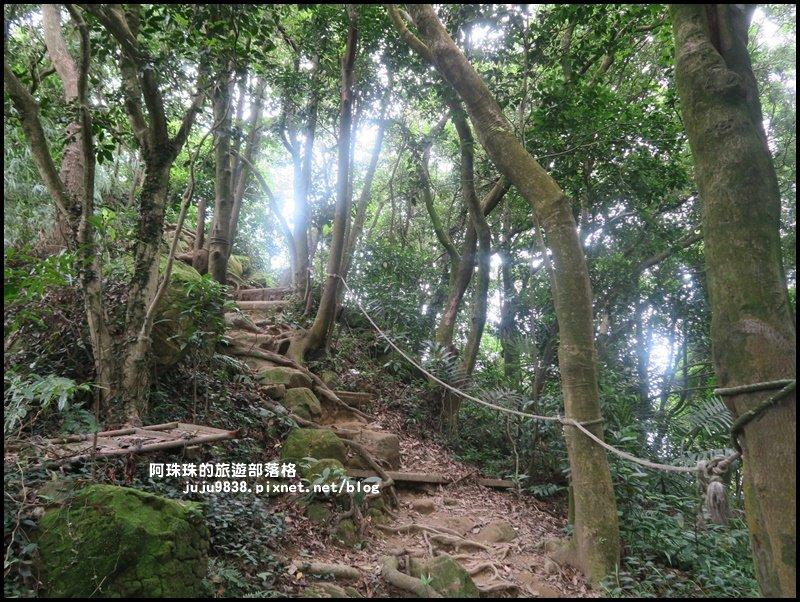 三峽鳶山步道初體驗_622105