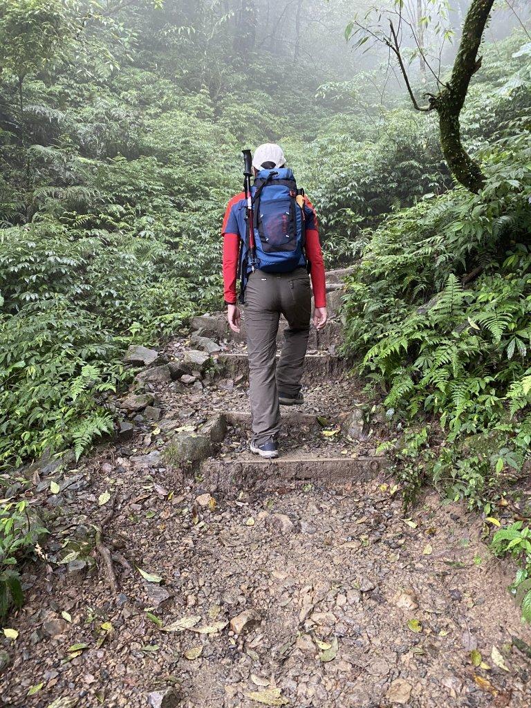 步道巡訪員 l 109年12月聖母登山步道尋訪_1225265