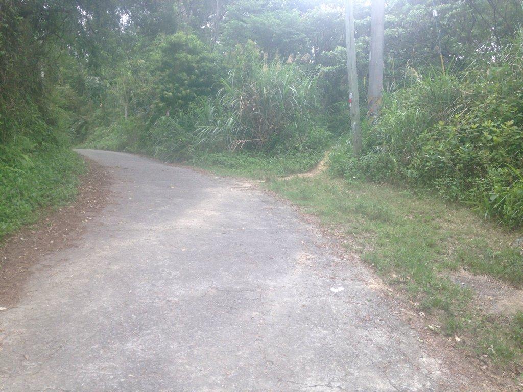 雞南山步道_589184