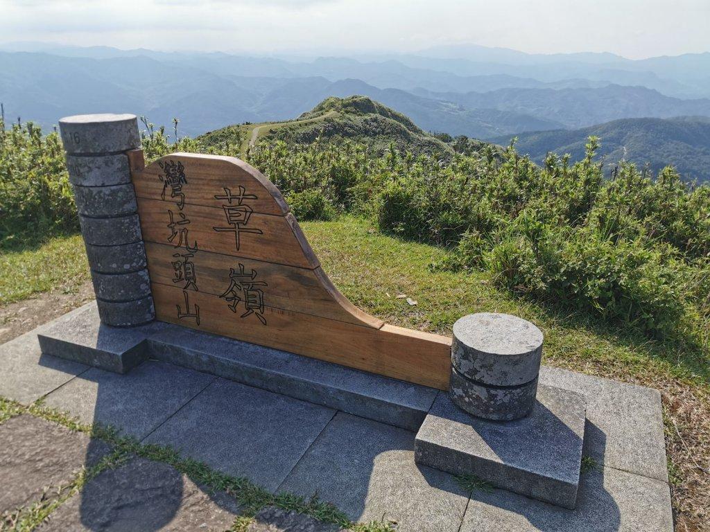 桃源谷步道(大溪、草嶺線)-滿谷牛與白鷺_1033935
