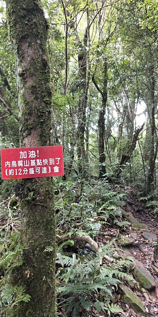 內鳥嘴山,北得拉曼神木群步道,瀑布初體驗_1062669