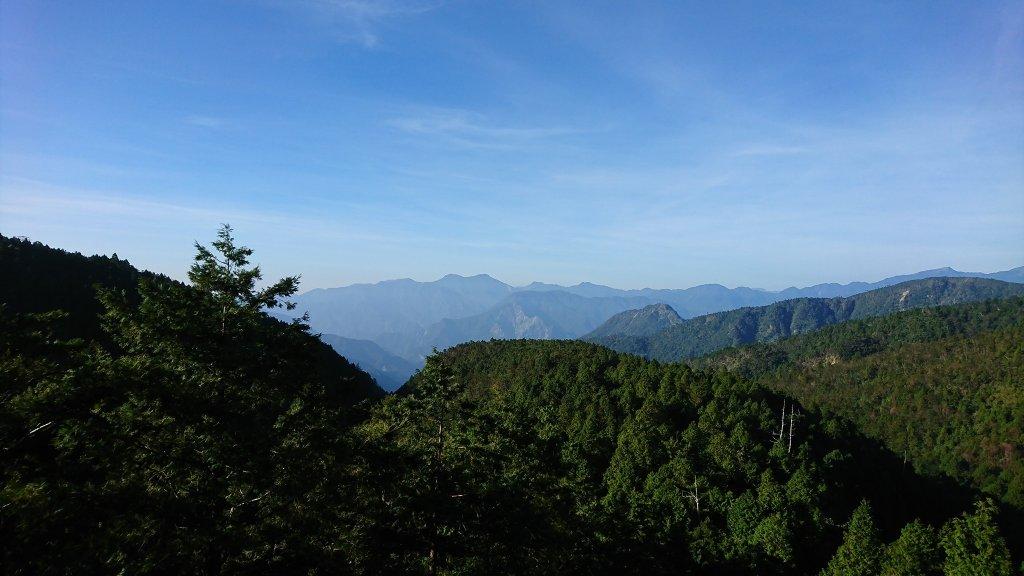山毛櫸國家森林步道_631379