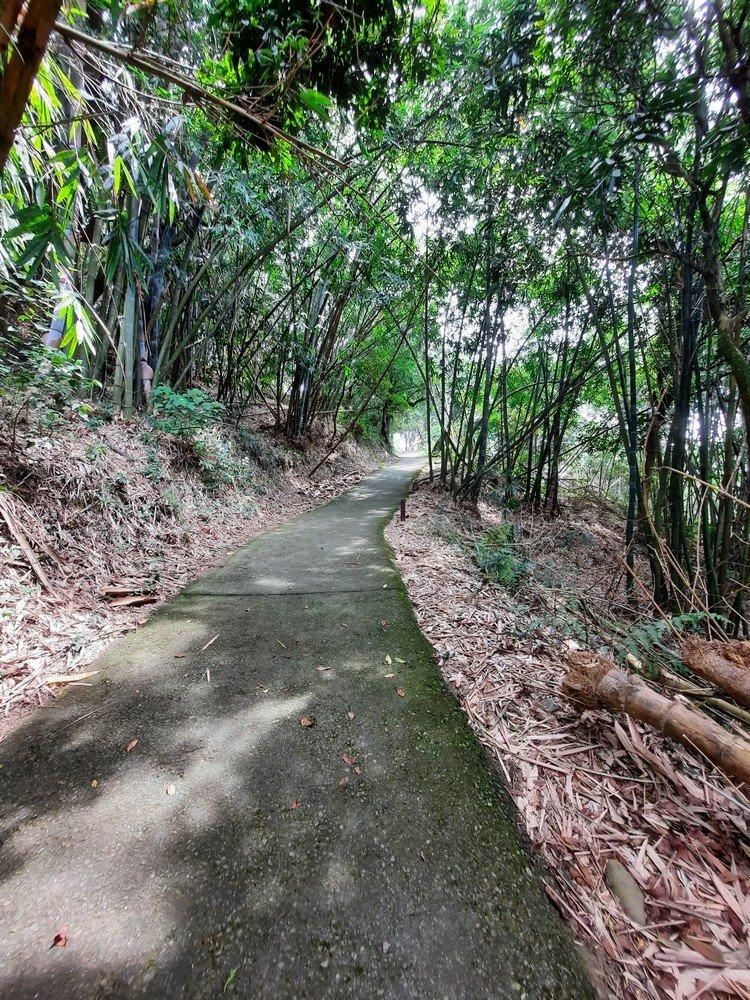 《雲林》林內龍過脈步道20200913_1098545