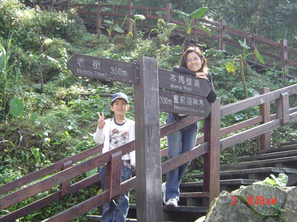 2008 May 奮起湖步道_584792