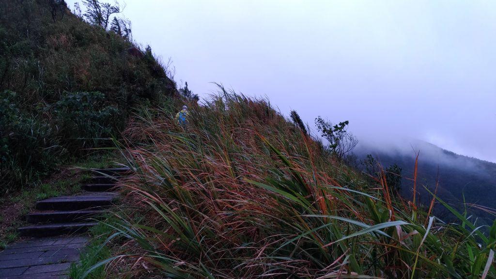 起大霧~~~無大景的五分山!_186071