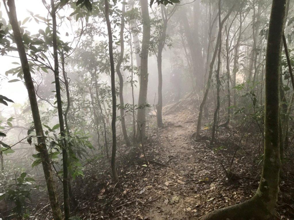 尾寮山16.8公里_481397