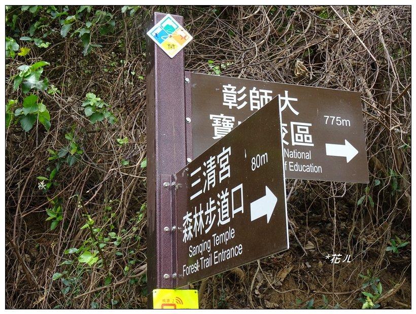 桃源里森林步道_904531
