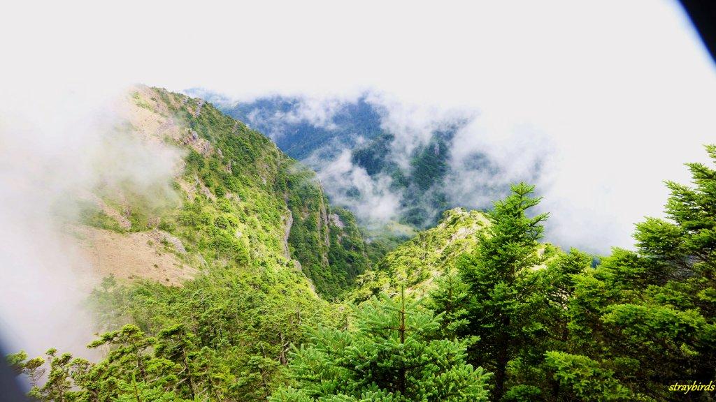 流浪山林的故事~雪山聖稜線_644172