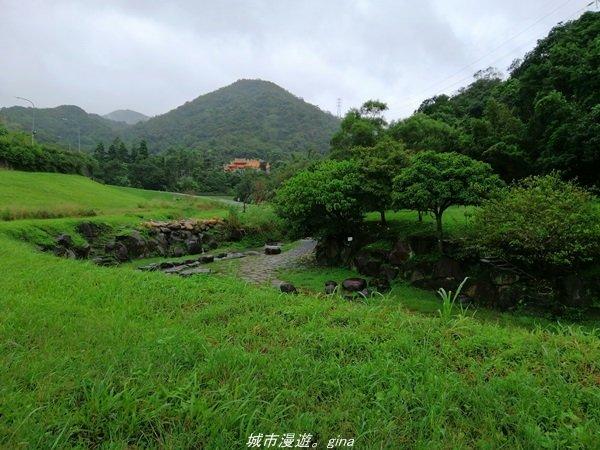 【台北。內湖】翻翻舊照來回味。 親水綠地散散步。大溝溪溪畔步道_1412316