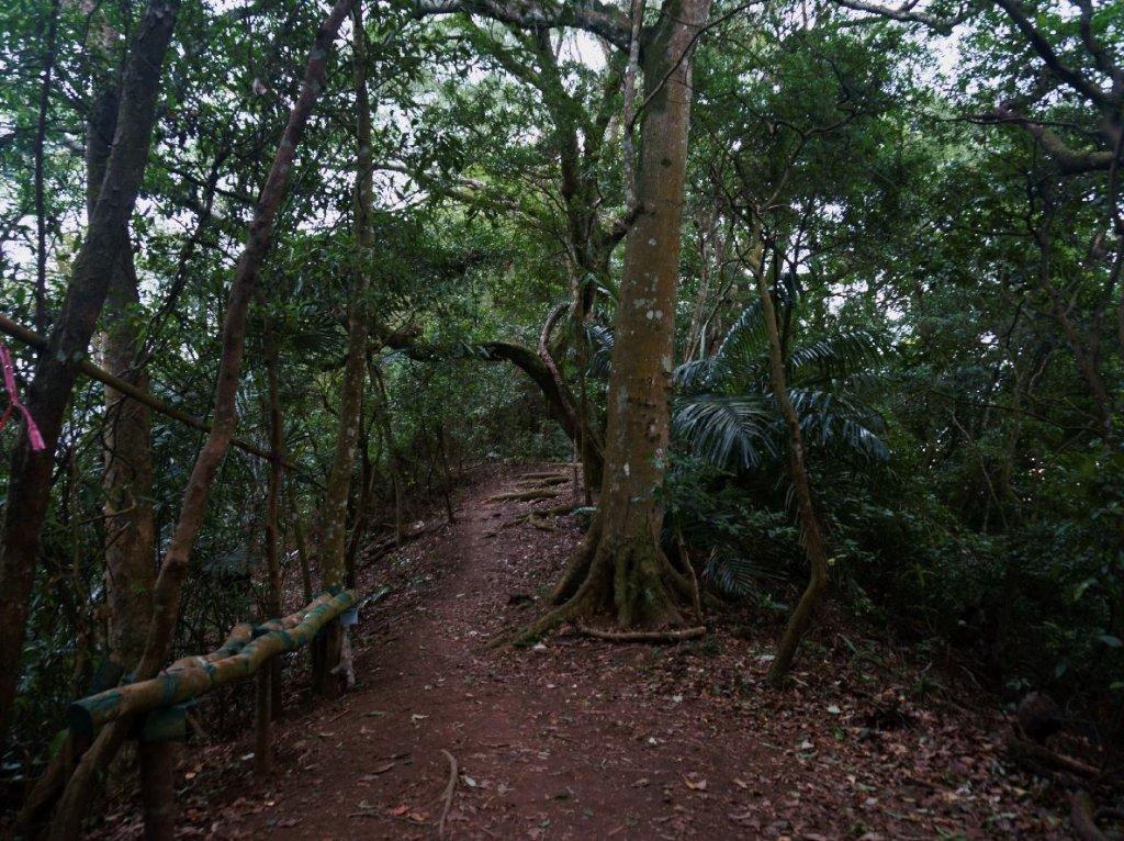 獅頭山+猿山 O型_1310385
