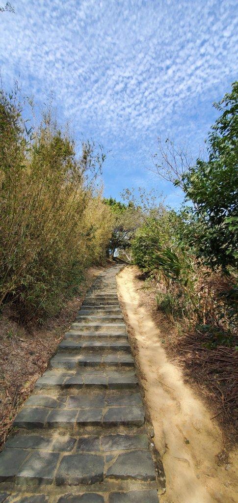 2021-02-10九芎湖步道群(九福、觀南、霽月步道)_1363946