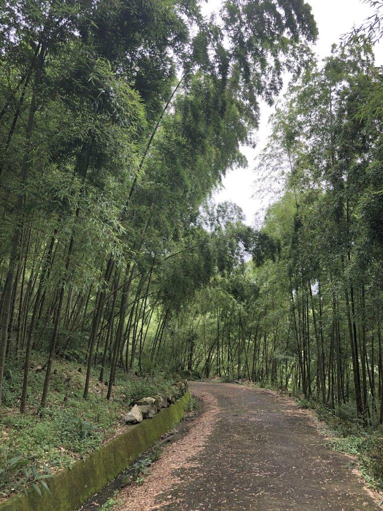 2019.6.30 大尖山、二尖山連走_621302