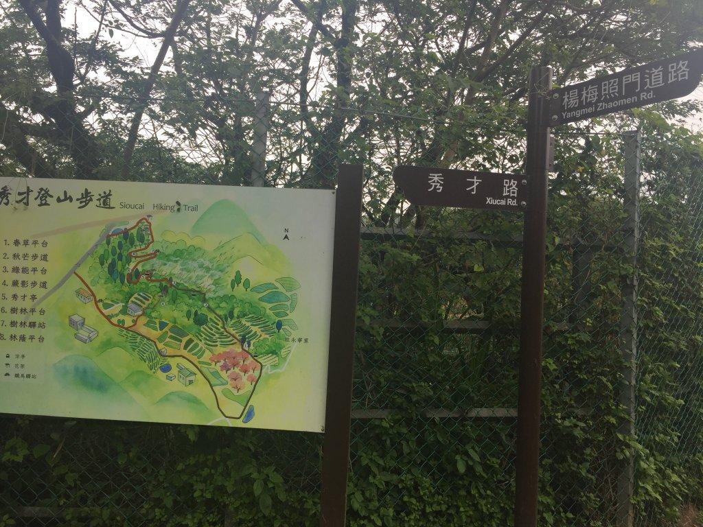 楊梅區秀才里 秀才步道_570715