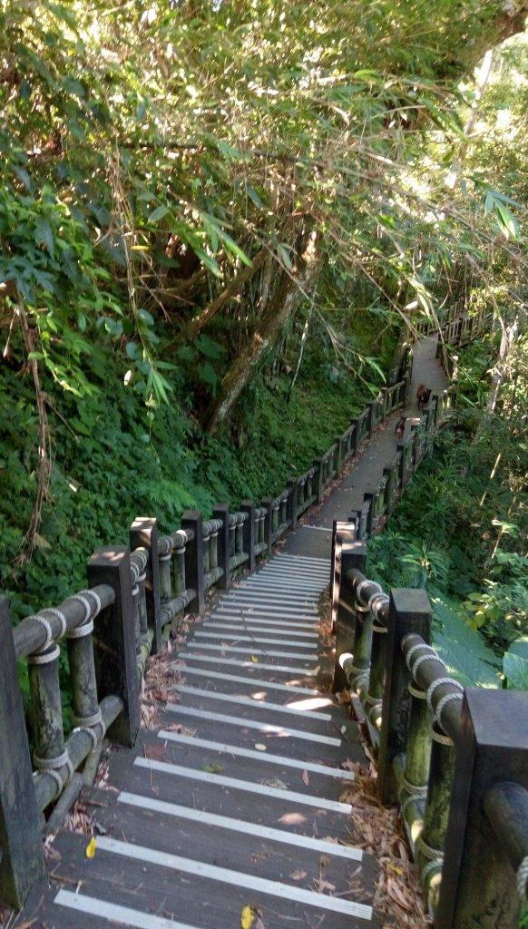 2018-09-26 苗栗 蓬萊溪自然生態園區_422519