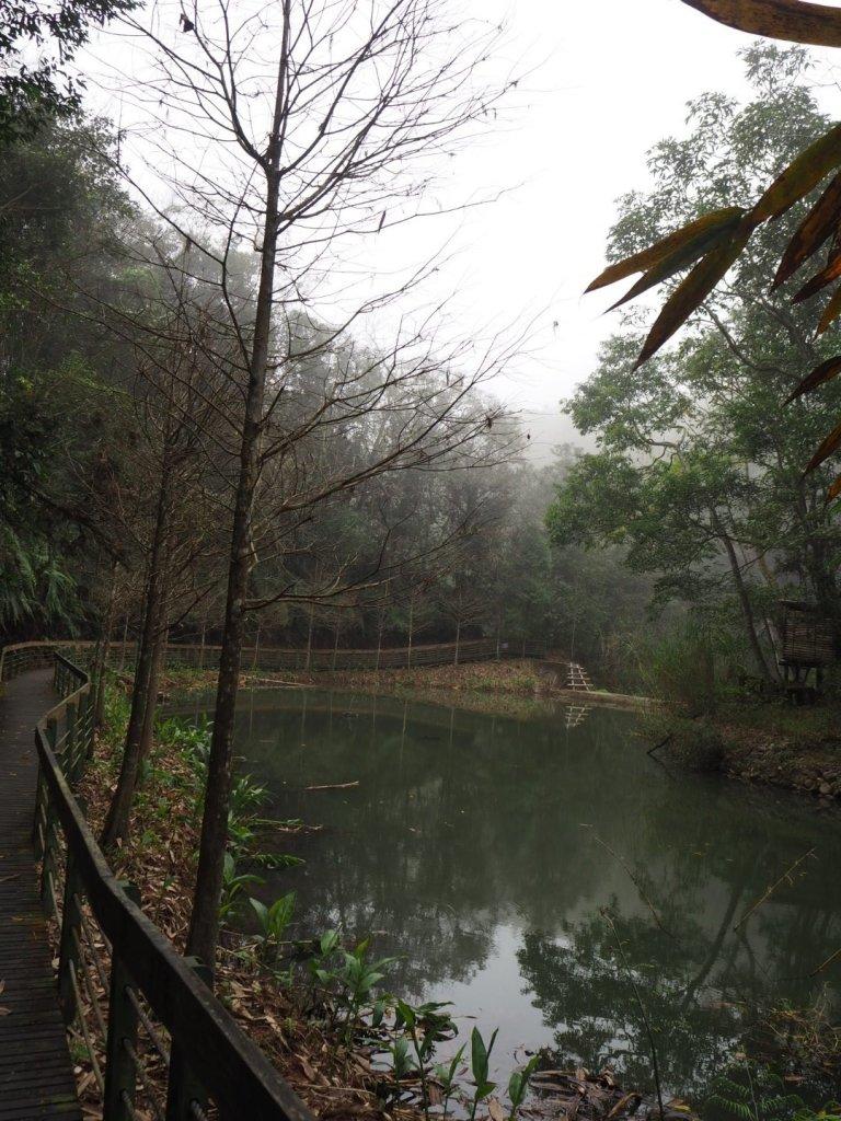 南投魚池頭社水庫生態步道20200216_838351