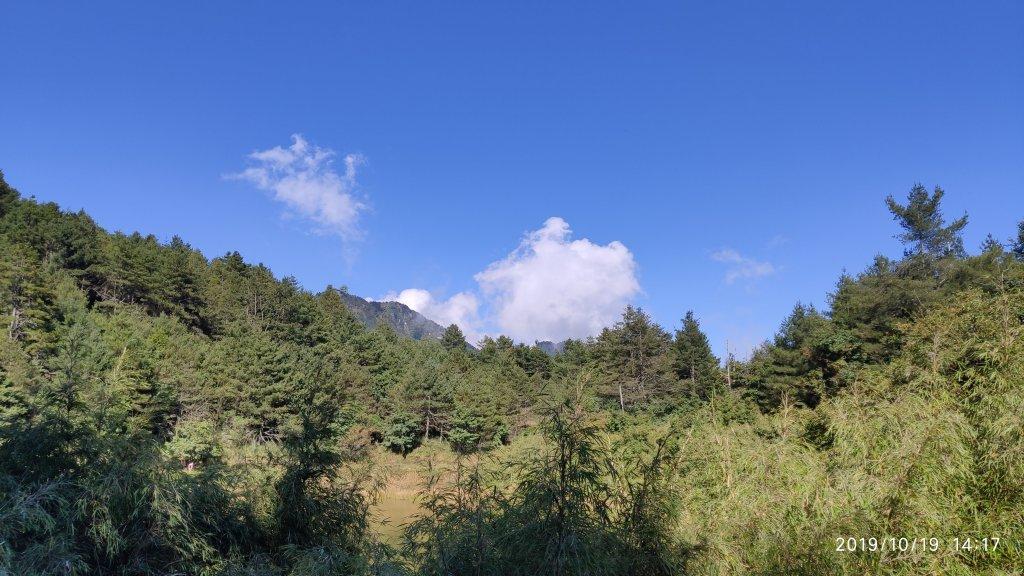 大雪山神木&天池_715422