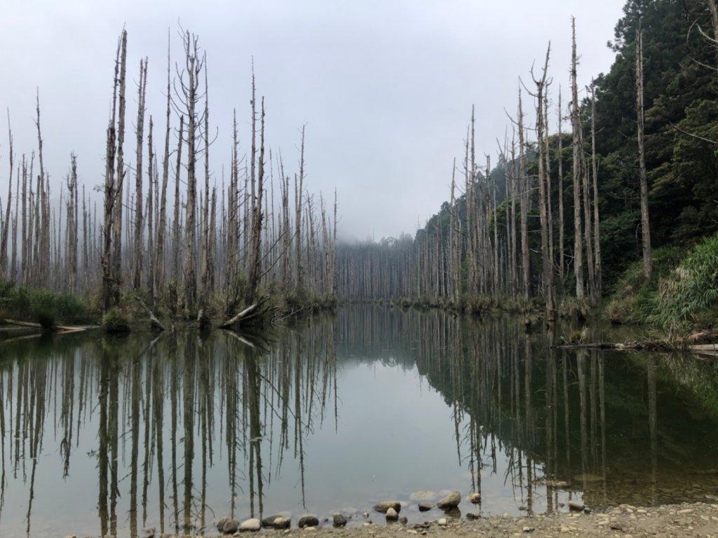 水漾森林_1052598