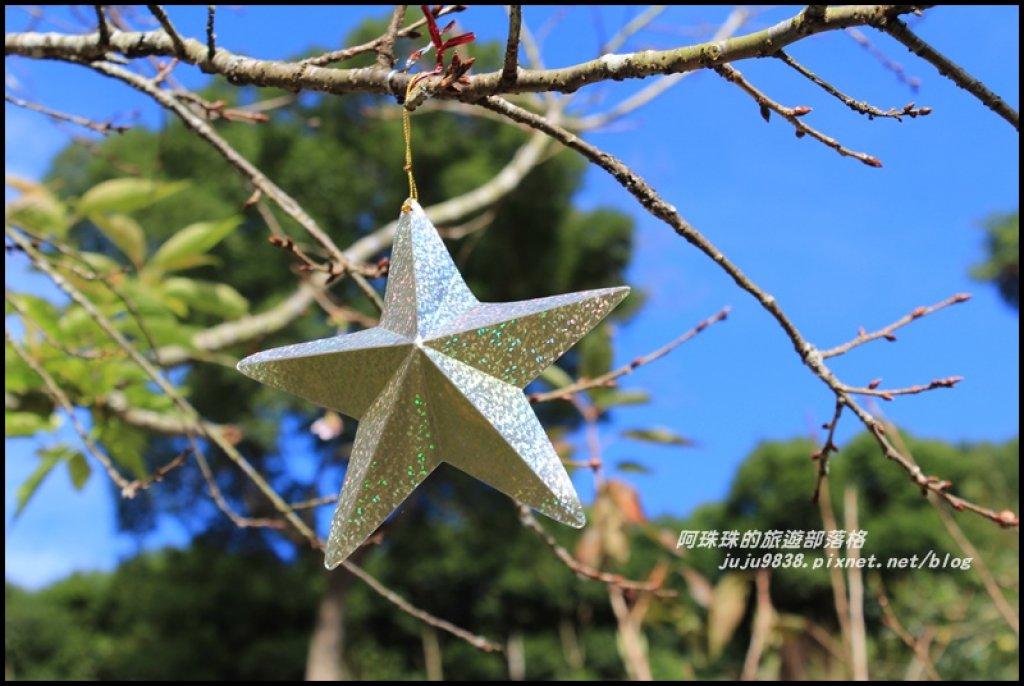 沐心泉冬季限定白雪木與黃金楓的浪漫相遇_481805
