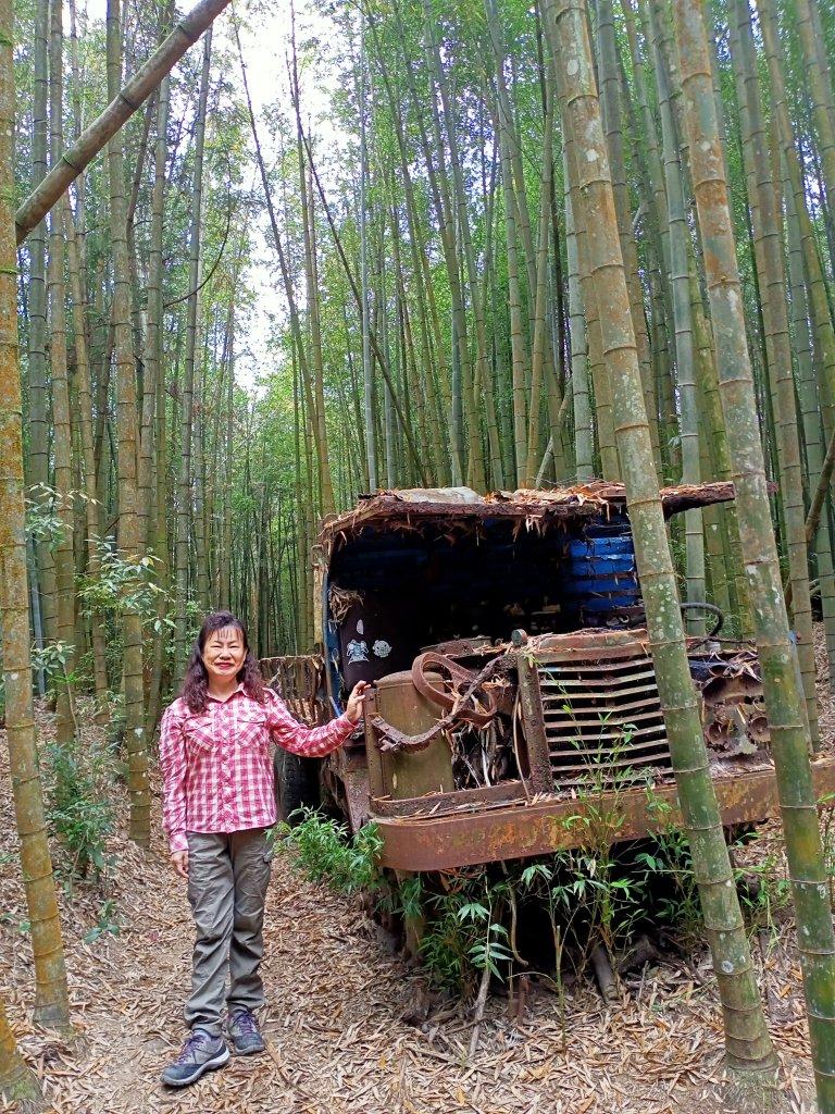 林相優美的臺中長壽山、肥崠山 - 鳶嘴西稜步道_1357246