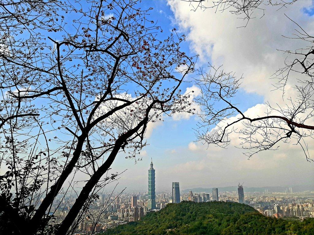 臺北大縱走6:中華科技至拇指山妙台稜徑_1239787
