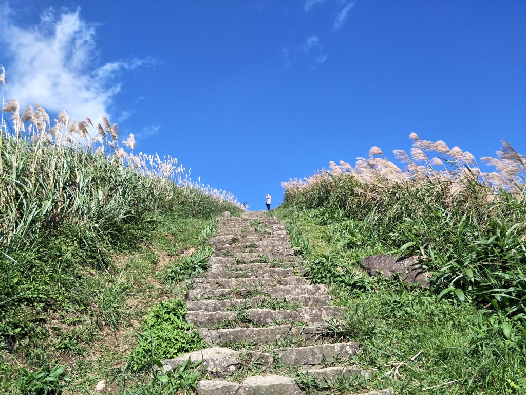 2018 11 30 雷霆峰步道(基隆山東峰、黃金一稜)&基隆山步道_469086