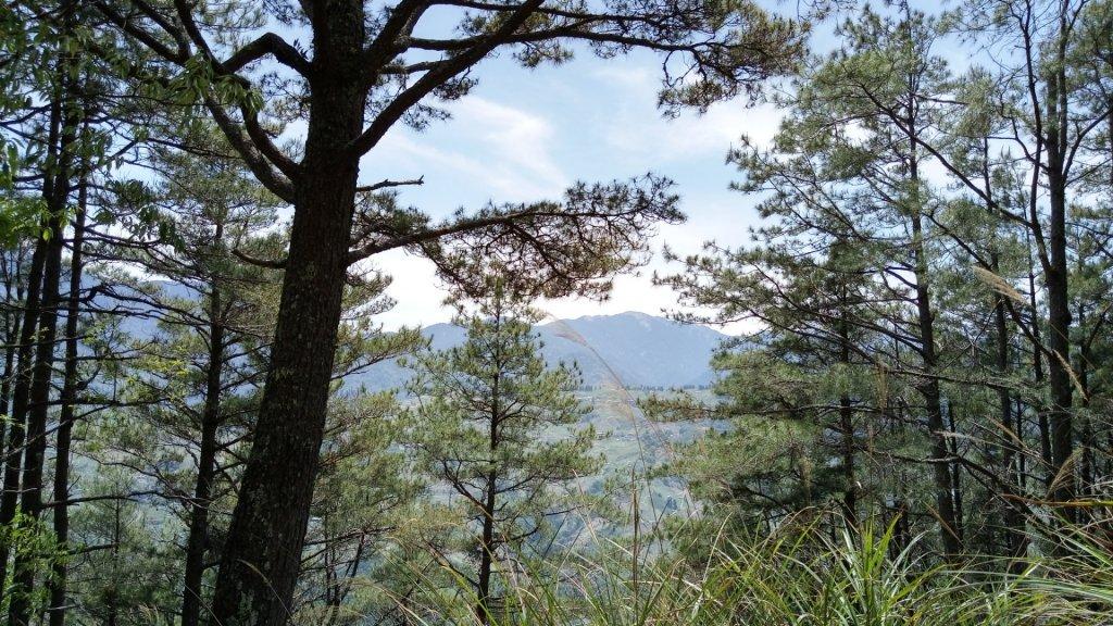 百岳天堂路 天梯散步道_662076