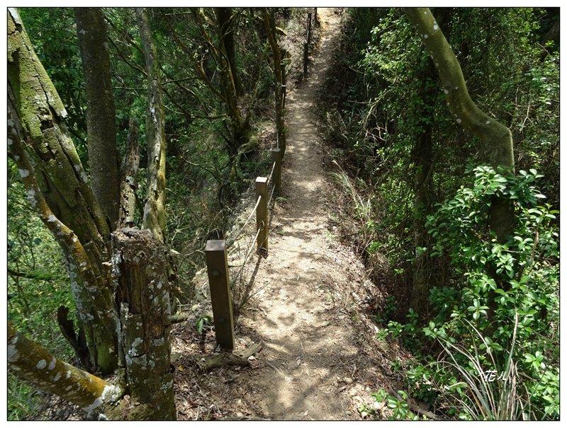雙峰山步道_1364241