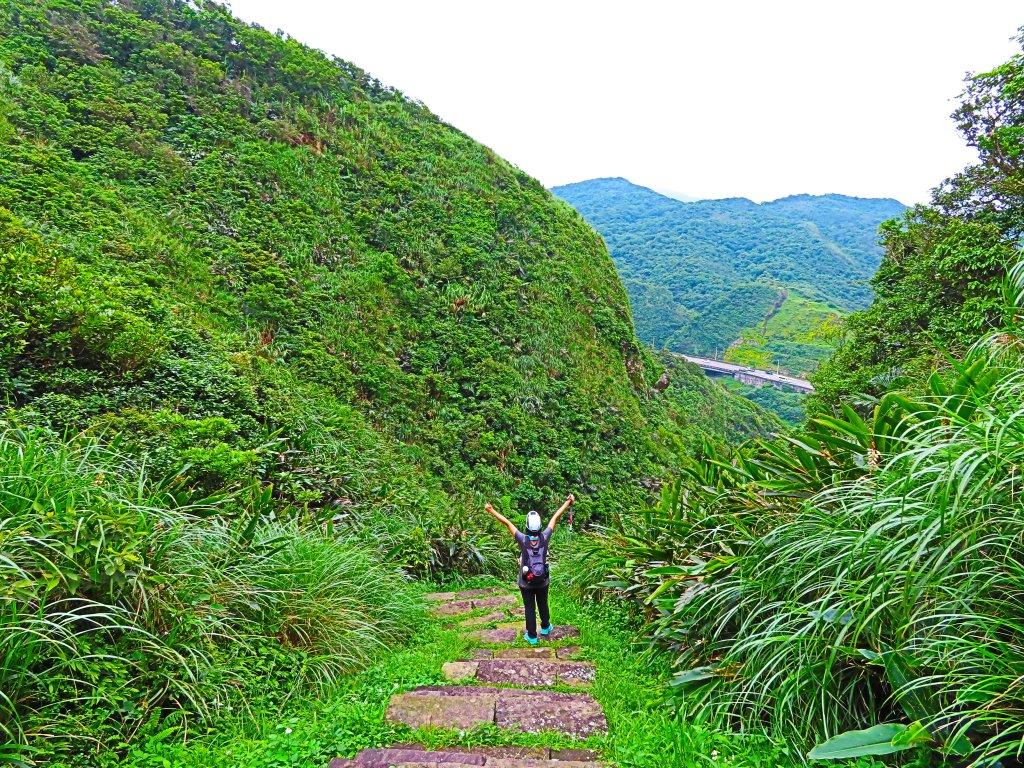 搭著公車去旅行:情人湖、海興路森林步道_583109