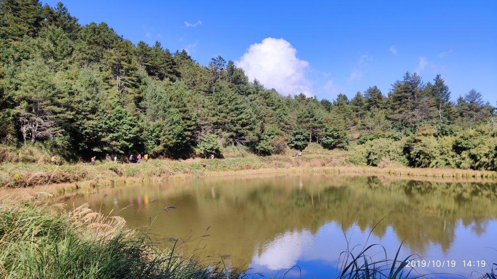 大雪山神木&天池_715426