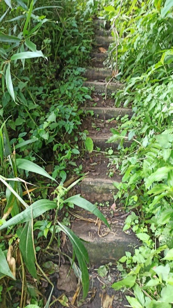 風雨飄搖中的石夢谷、情人谷瀑布步道_1134904