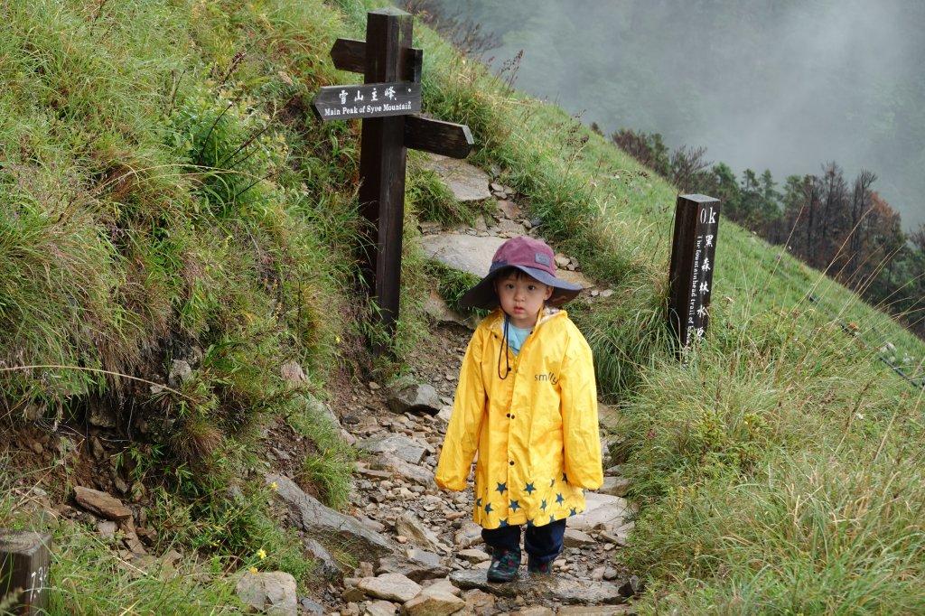 阿興阿賢雪山主峰東峰_626453