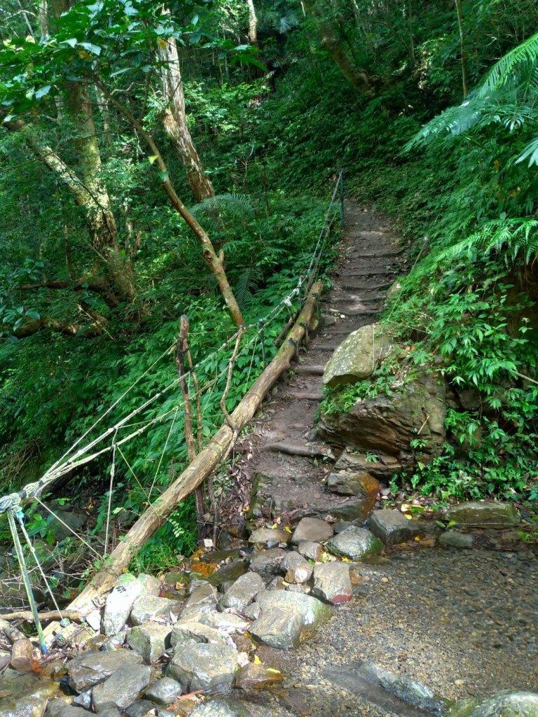 雲森瀑布步道_644531