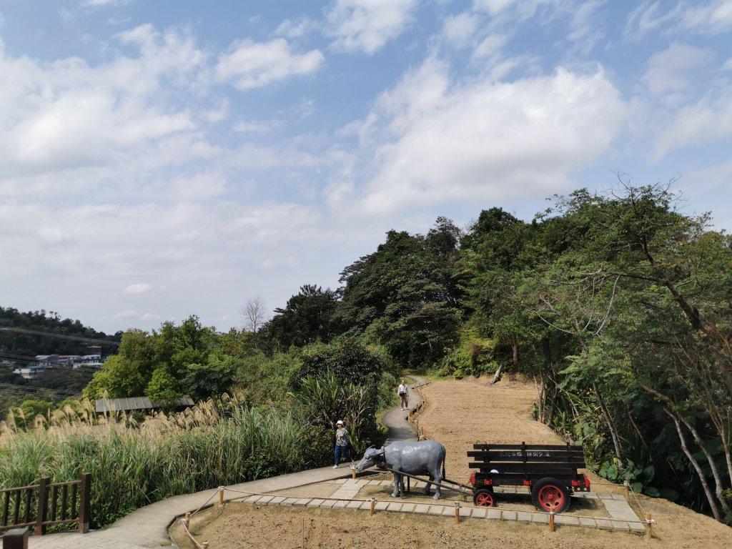 臺北大縱走第 7 段 - 貓空站的櫻之美_875871